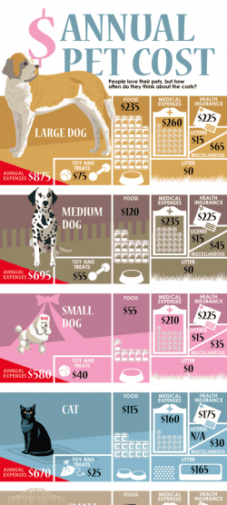 Annual Cost of Pets [Infographic] | Daily Infographic