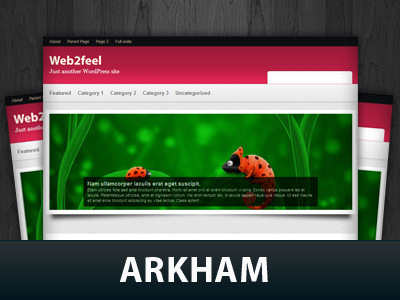 Arkham WordPress Themes