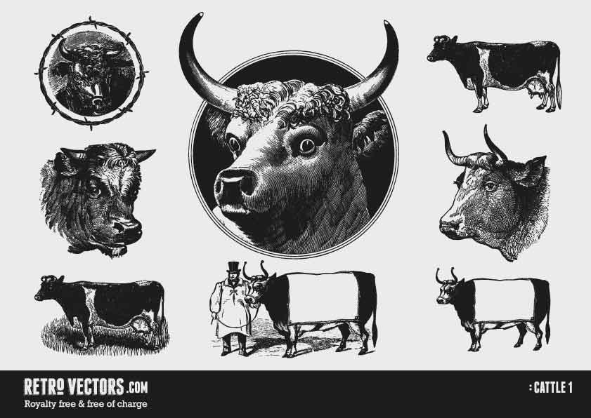 Cattle 1 | Free Retro Vectors