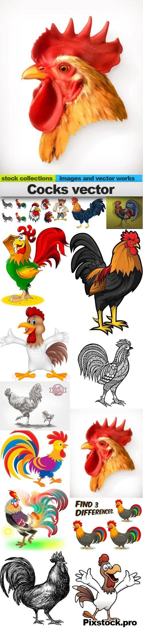 Cocks vector, 15 x EPS