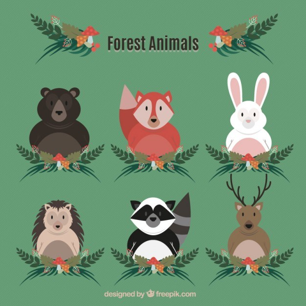 Collection of forest animal with leaves ornament