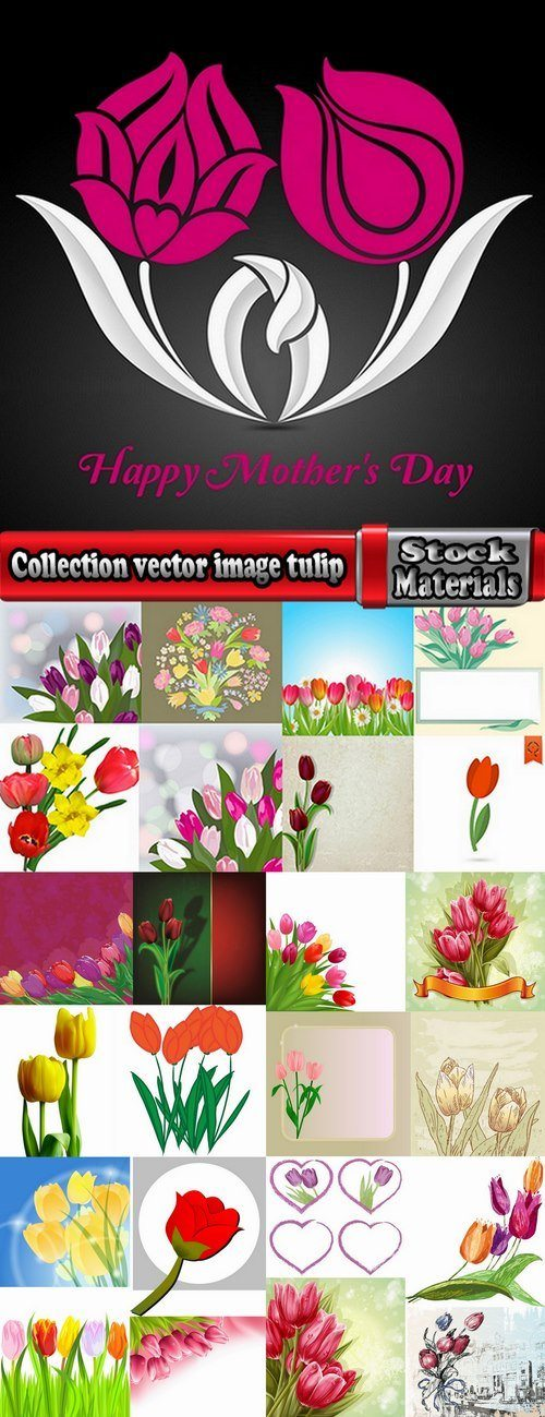 Collection vector image tulip 25 Eps