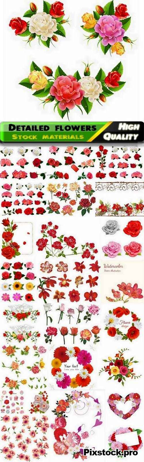 Detailed roses and other flowers – 25 Eps