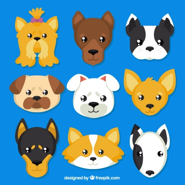 Dogs breeds avatars