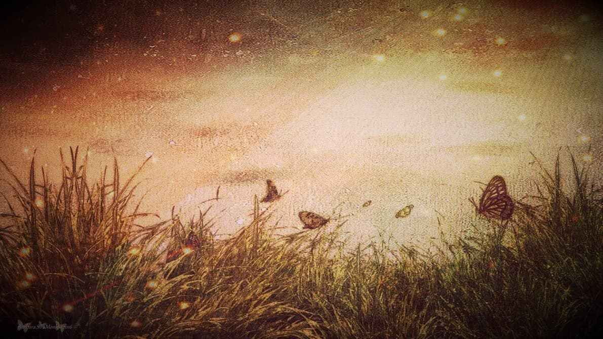 Dreams and Butterfly's Wallpaper by PaMonk on DeviantArt