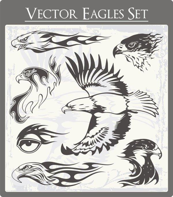 Eagle free vector 01