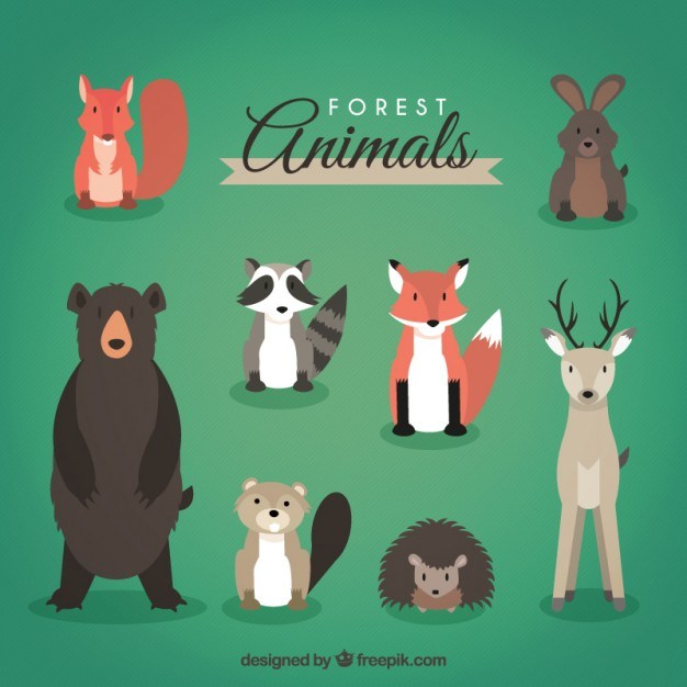 Forest animals head on pack