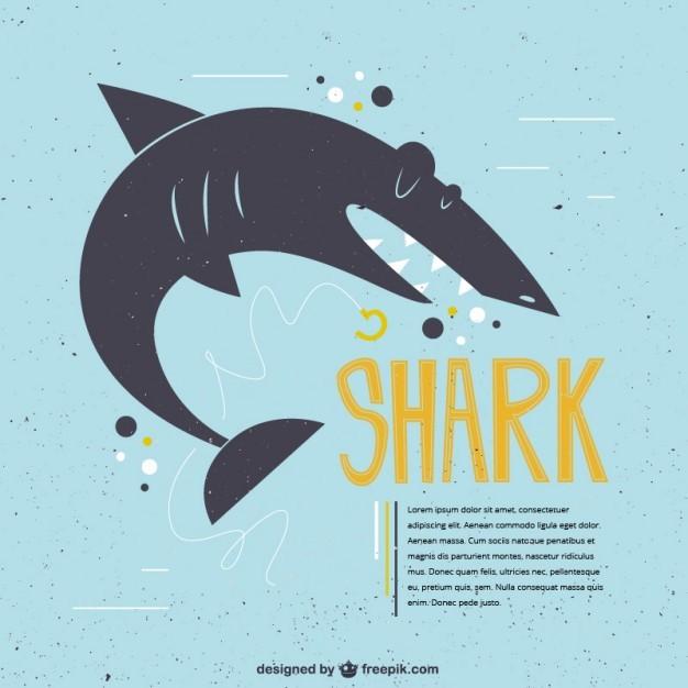 Funny shark illustration
