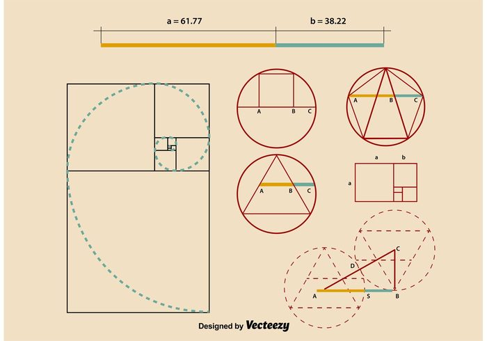 Golden Ratio Proportions – Download Free Vector Art, Stock Graphics & Images