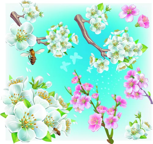 Japan Cherry Blossoms free vector 01
