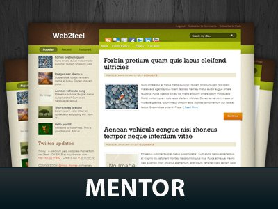 Mentor WordPress Themes