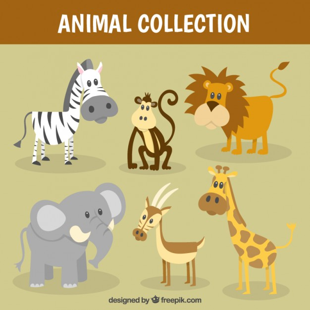 Nice wild animal collection