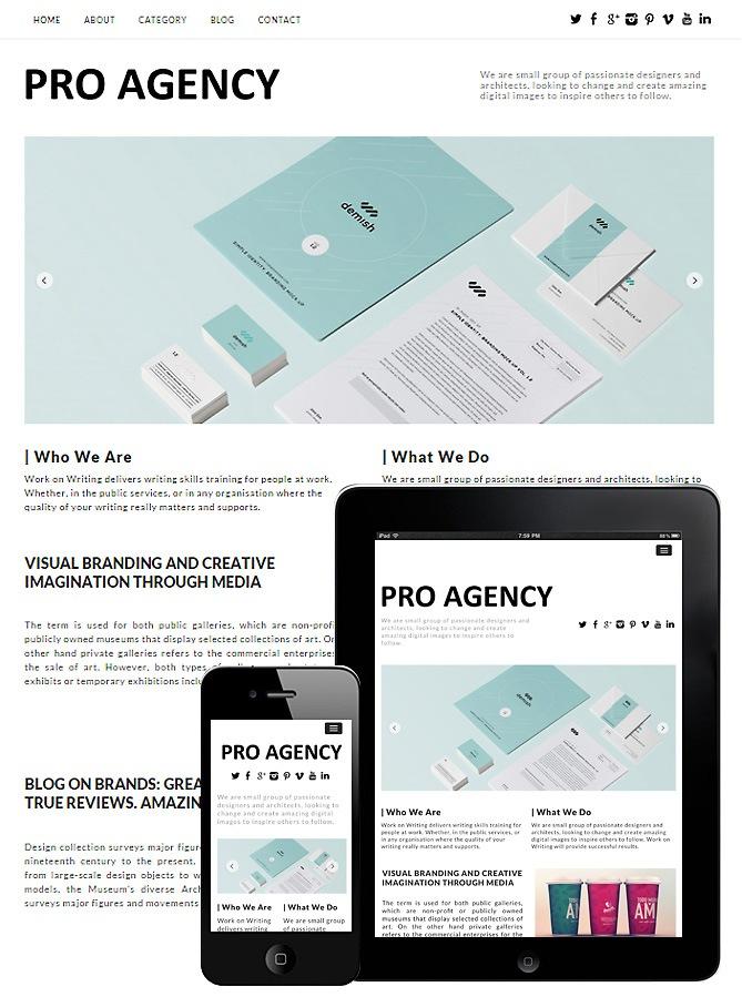 Pro Agency Responsive Theme