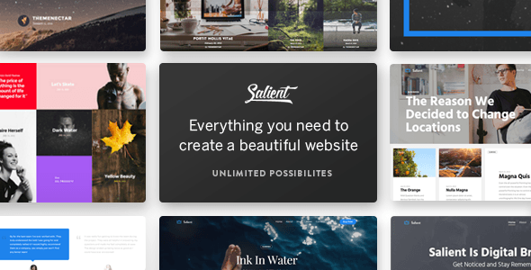 Salient – Responsive Multi-Purpose Theme – WordPress
