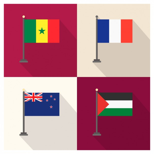 Senegal France New Zealand and Palestina Flag