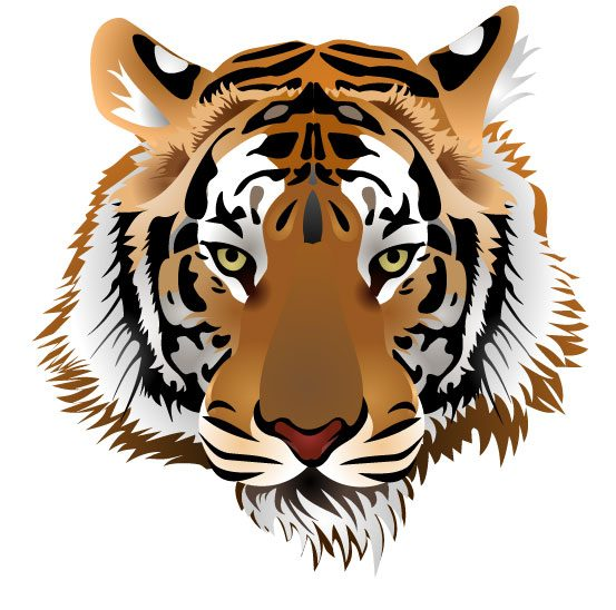 Set of Tiger vector picture art 03