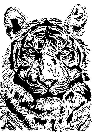Set of Tiger vector picture art 02