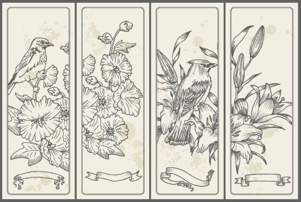 Set of Vintage with Flowers cards vector 01