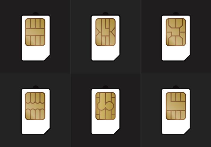 SIM Card Types Vector