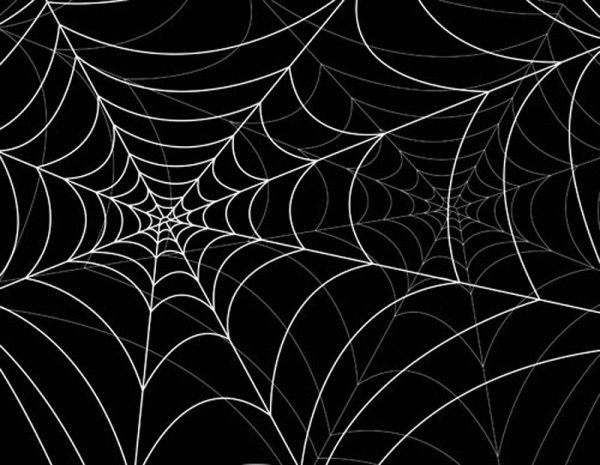 spiderweb design elements vector 05
