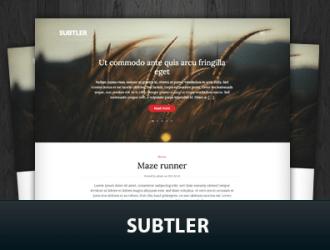 Subtler WordPress Themes