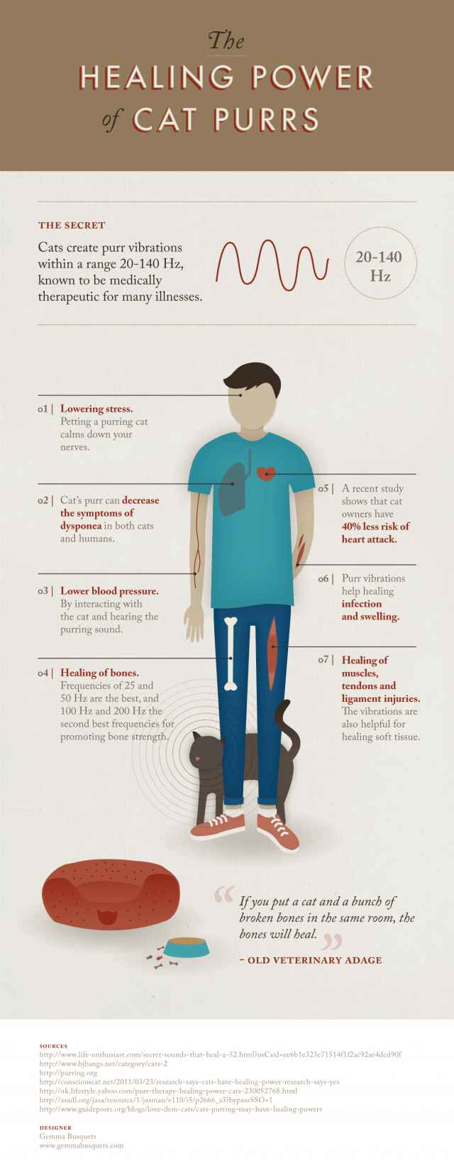 The Healing Power of Cat Purrs [Infographic] | Daily Infographic