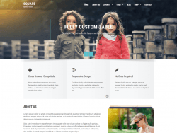 Square WordPress Themes
