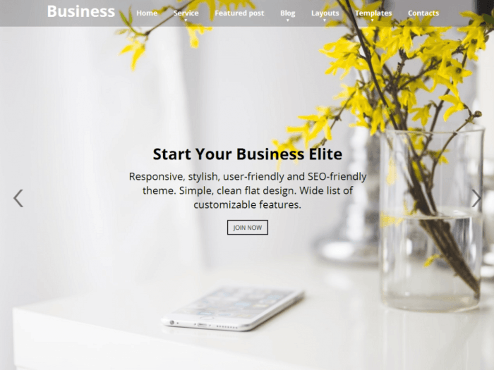 Business Elite WordPress Themes
