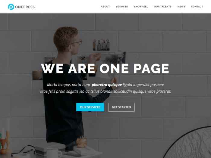 OnePress WordPress Themes