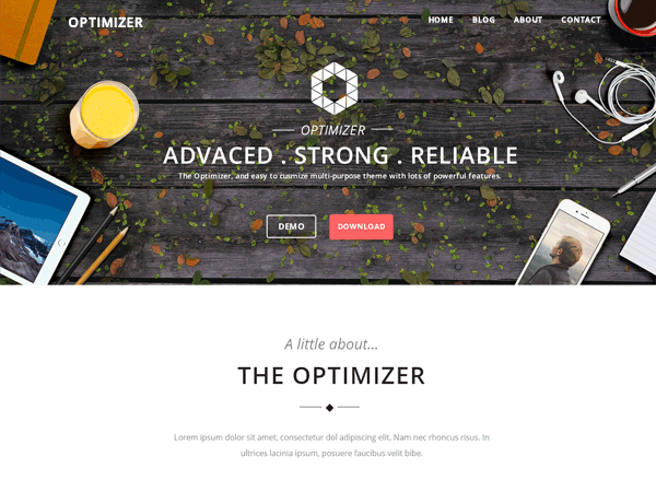 Optimizer WordPress Themes