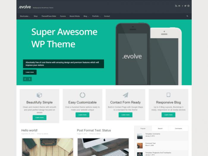 evolve WordPress Themes