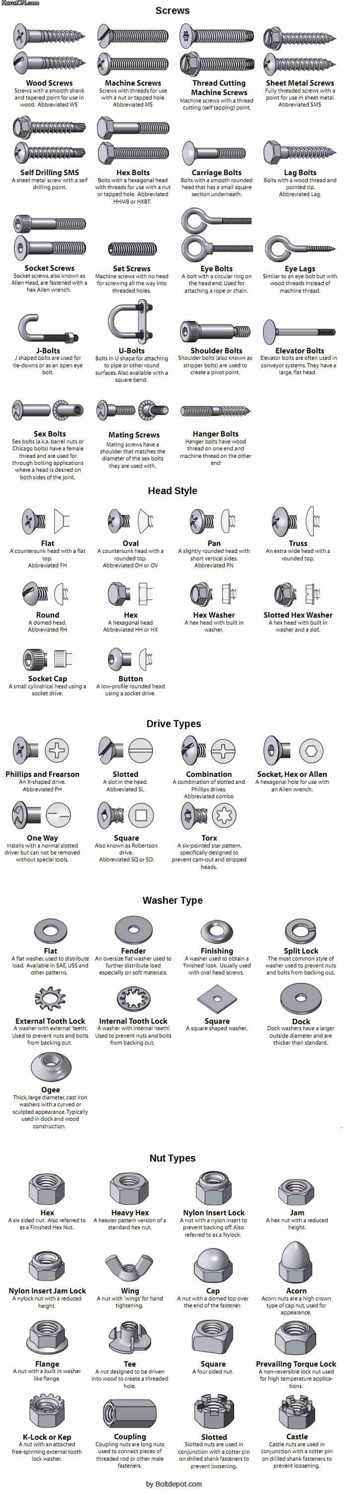 Types of Screws and Bolts [Guide] [Infographic] | Daily Infographic