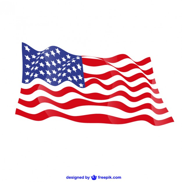 United States vector free flag