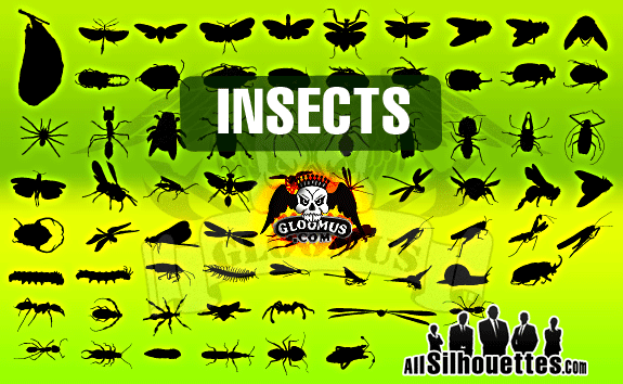 Vector Insects – All-Silhouettes