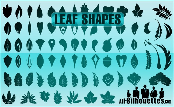 Vector Leaf Shapes – All-Silhouettes