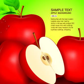 Vector Organic food backgorunds 04