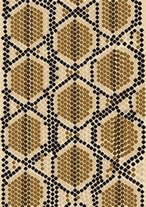 Vector set of Snake skin pattern elements 03