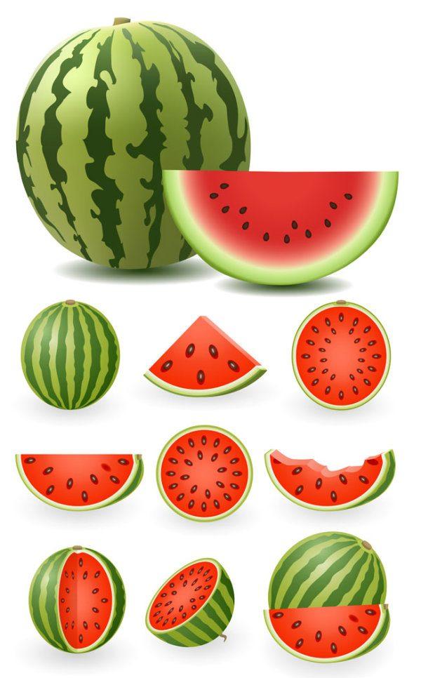 Watermelon Vector material
