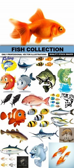 Fish Collection – 25 Vector