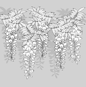 Japanese line drawing of plant flowers vector material -12