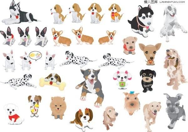 Various cute dog