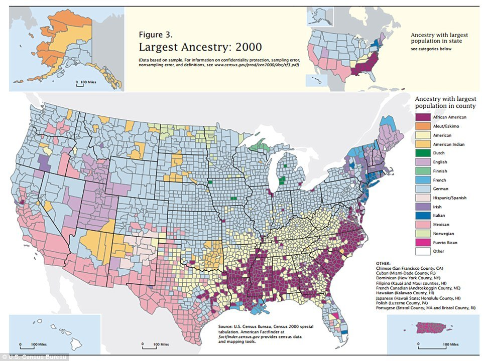 American ethnicity map shows melting pot of ethnicities that make up the USA today