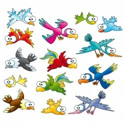 Coloured birds collection Vector | Free Download
