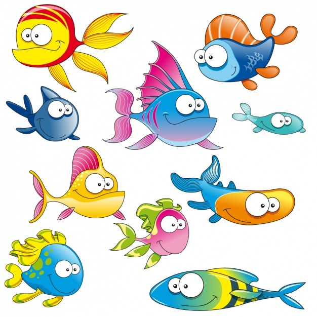 Coloured fishes collection Vector | Free Download