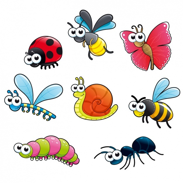 Coloured insects collection Vector | Free Download