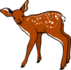 Cute Baby Deer Clipart | Clipart Panda – Free Clipart Images – Cliparts.co