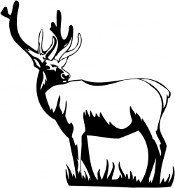 Deer Clipart Black And White – Cliparts.co