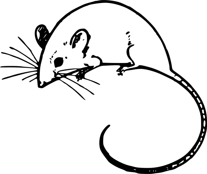 File:Mouse Clipart.svg – Wikimedia Commons – Cliparts.co