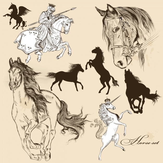 Hand drawn horses collection Vector | Premium Download