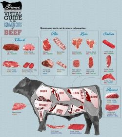 An Interactive Visual Guide to the Common Cuts of Beef | Primer